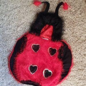 LadyBugg  Costume